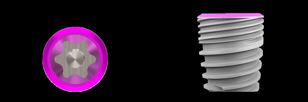 aureaevo-rp-55
